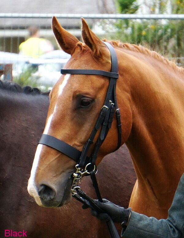 FSS Traditional English Working Hunter Show Hunt Bridle 5 8  Cheeks 1.1 8  NOSE