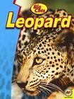 Leopard by Steve Goldsworthy (Hardback, 2014)