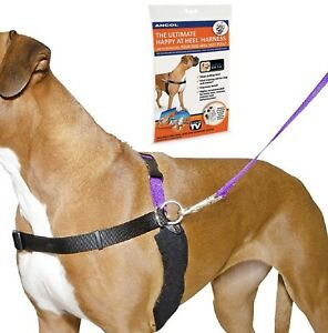 Ancol-PDL-Dog-Harness-amp-Lead-Set-Happy-at-Heels-4-Sizes-SMALL-MED-LARGE-XL