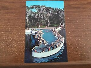 Details about Esther Williams Swimming Pool Cypress Gardens Florida 50\'s?  Chrome Postcard