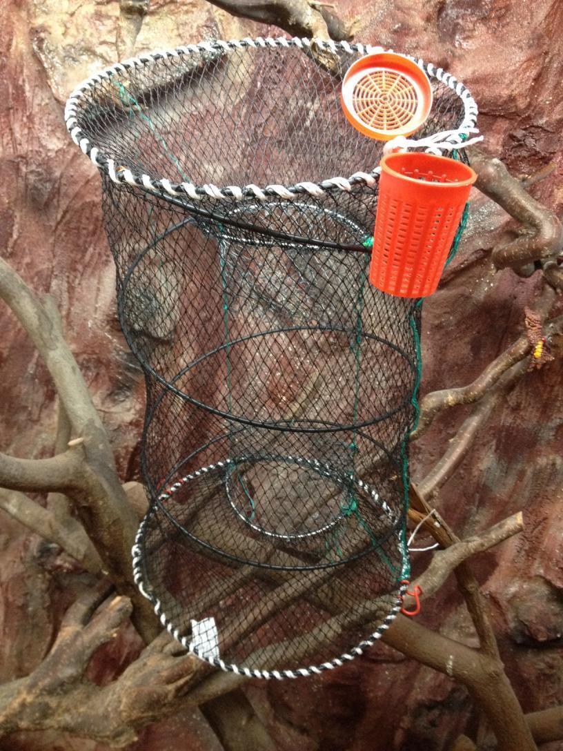 Fischreuse, aalreuse, köderfischreuse, Reuse y cebo lata, 40x80cm, top precio precio precio  nuevo 5f129d