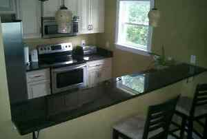 Counter Top Faux Granite? Black Countertop Film 36