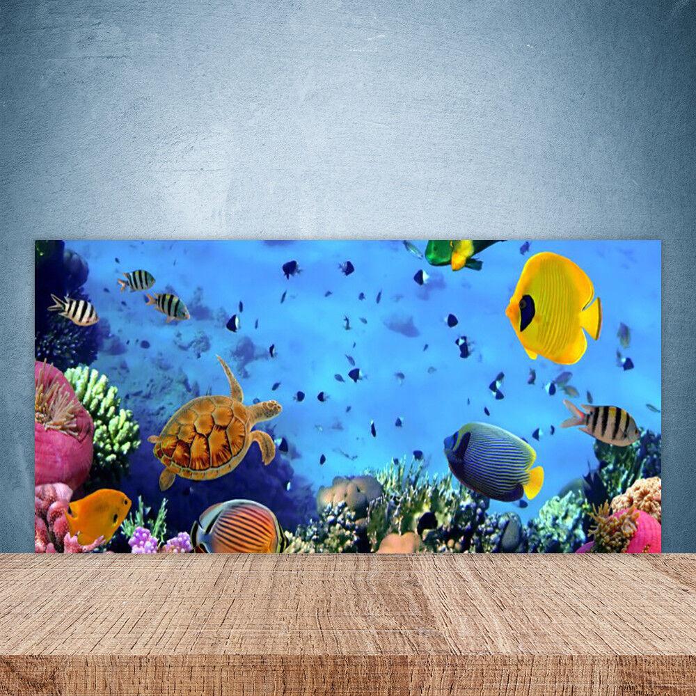 Vidrio Templado Cocina salpicaduras 100x50 bajo el agua peces de arrecife de coral de la naturaleza