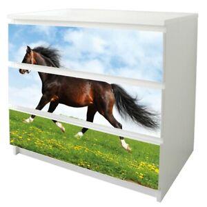 banjado-Klebefolie-Moebel-Sticker-fuer-Ikea-Malm-3-Schubladen-Pferd