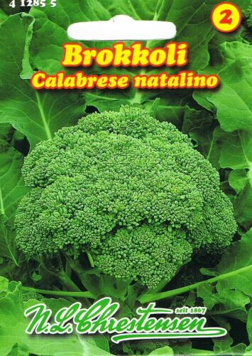 """Broccoli /""""CALABRESE NATALINO/"""" sementi circa 80 SEMI ORTAGGI Qualità Top"""