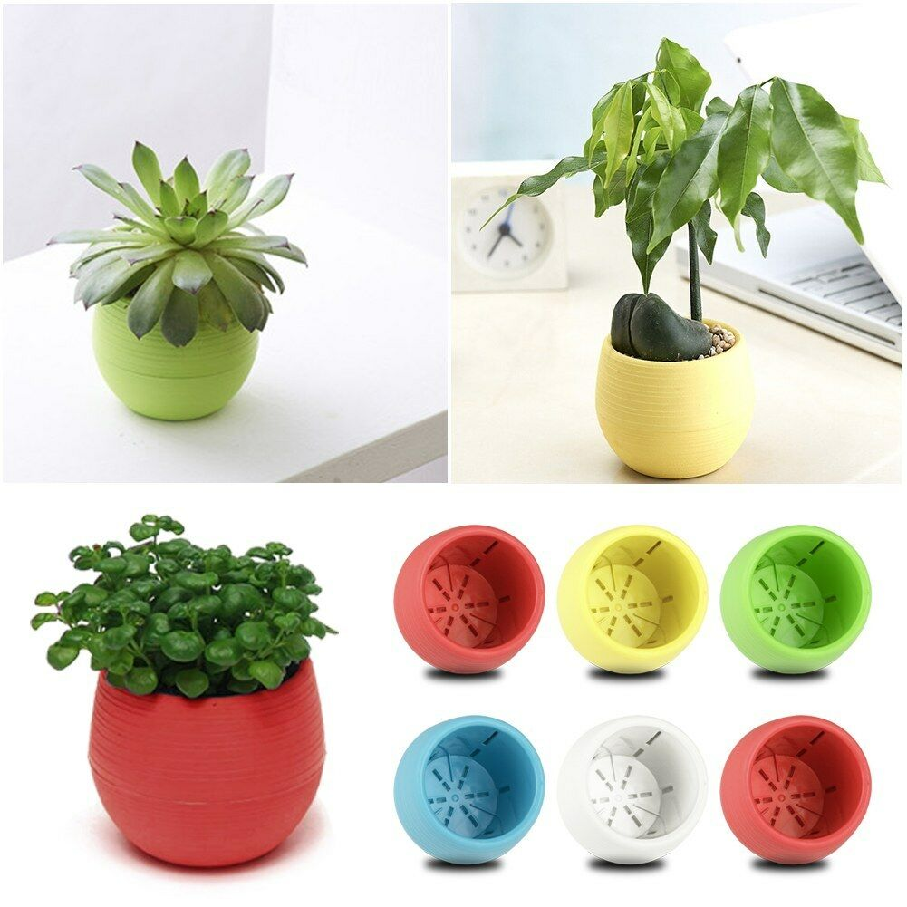 hot sale small mini plastic plant flower pot home office. Black Bedroom Furniture Sets. Home Design Ideas