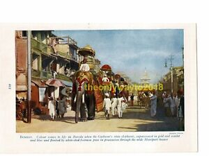 Baroda-Gaekwars-State-Elephants-India-Book-Illustration-Print-c1920