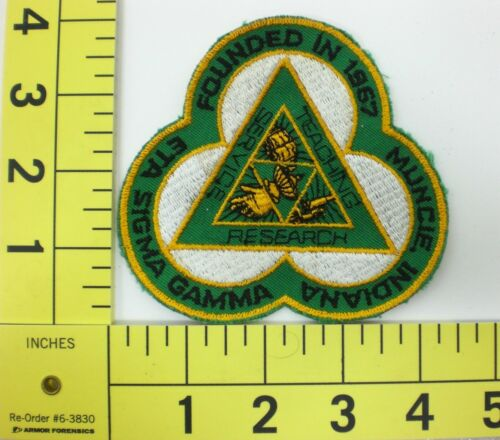 Muncie Indiana Teaching Service Research ETA Sigma Gamma Patch