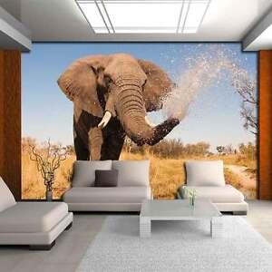 Papiers Peints Photos Papier Peint Papier Peint La Fresque Eau Animaux éléphant Désert 3fx3622p8-afficher Le Titre D'origine Pz1cubd7-07181421-564274816