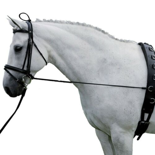 Intrepid International nouveau cou civière cheval Topline Outil d/'entraînement Noir