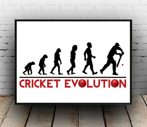 Wall art. Evolution of Cricket poster