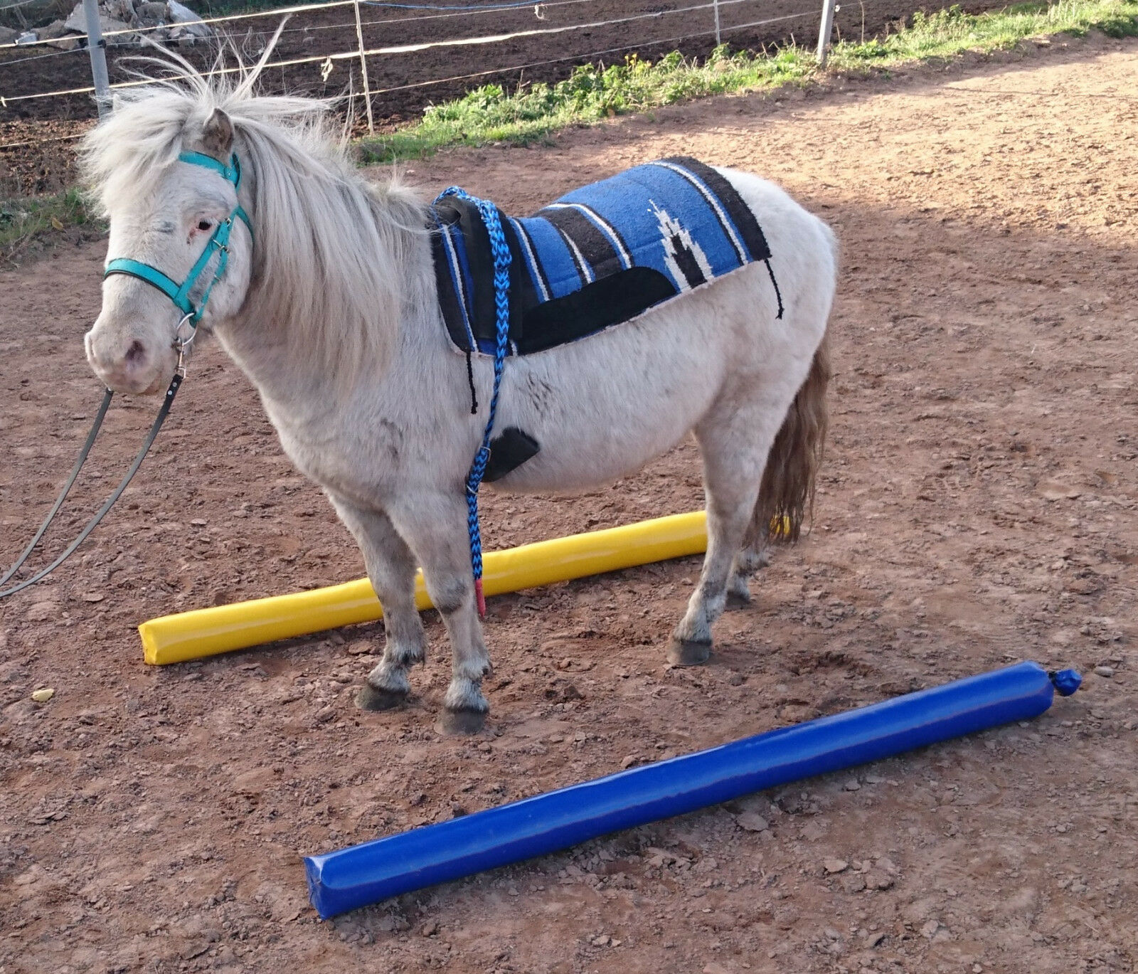 4x Soft Rods Blau Gelb 1,5m Extra for pony Dual activation