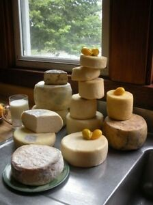 ... Making-Cheese-CDROM-Cheddar-25-Books-Camembert-Dairy-Roquefort-Butter