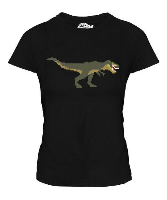 RUN Like You/'re Being Chased T-Rex Dinosaur Chasing Gym Ladies Tshirt Tee  AF23