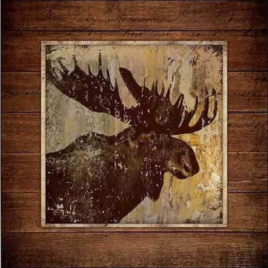 Stephanie Marrossot  Moose Ritratto Barella-Immagine Schermo Alce