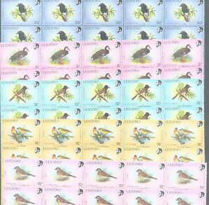 WHOLESALE-500-MINT-of-5-DIFFERENT-RARE-SPECIES-LESOTHO-BIRD-STAMPS-TOTAL-2-500