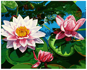16x20 Diy Acrylic Paint By Number Kit Oil Painting On Canvas Lotus