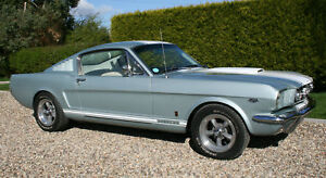 Ford-Mustang-Fastback-Now-Sold-Looking-for-similar-examples