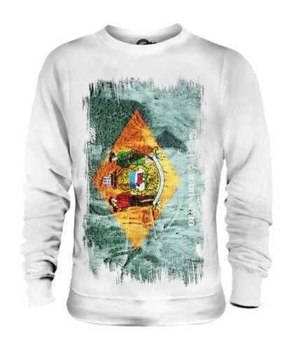 Delaware État Drapeau Grunge Unisexe Pull Delawarean T-Shirt Jersey Cadeau