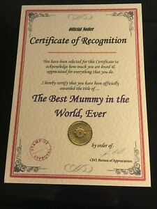 Unusual-Christmas-Birthday-Gift-Best-Dad-Grandad-Mum-Nan-Certificate-Present-B