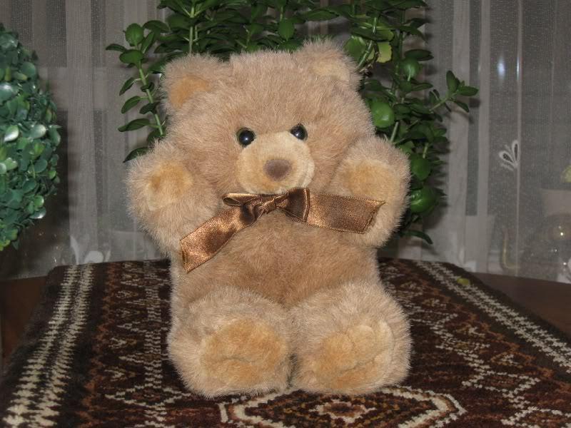 Dutch Kempenaar Braun Teddy Bear Plush