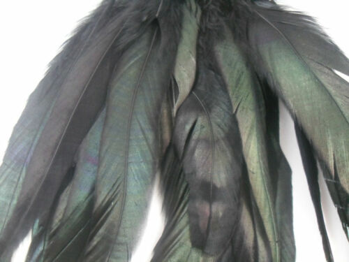 """BLACK IRIDESCENT COQUE FLY CRAFT 50 HAIR FEATHER 6/""""L-8/""""L"""