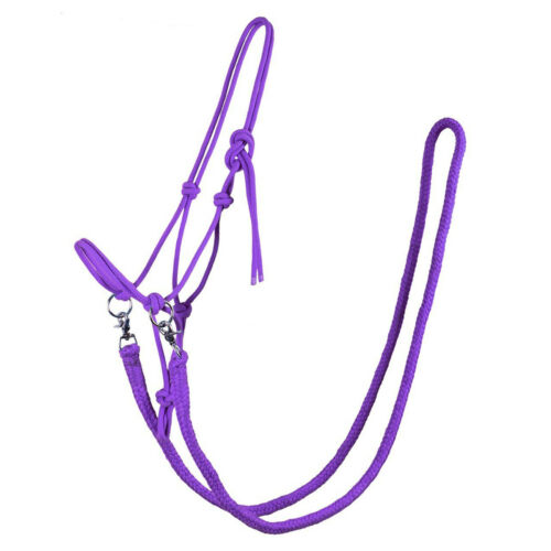 Qhp With Rein Rope Unisex Saddlery Head Collar Passion Flower All Sizes