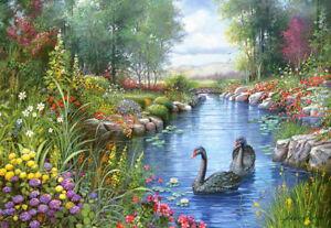 Castorland C-151042-2 - Black Swans,Andres Orpinas,Puzzle 1500 Teile - Neu