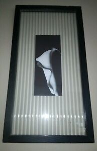 Black-And-White-Lily-Flower-Art-Textured-Glass-In-Black-Solid-Wood-Frame-Vintage