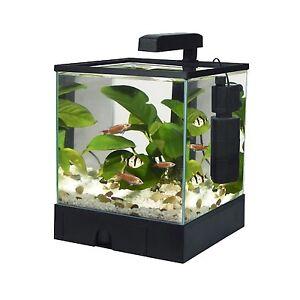 Pet Supplies > Fish & Aquarium > Aquariums