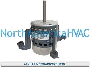 Oem carrier bryant payne 1 2 hp 120 240v ecm blower motor for Carrier x13 blower motor