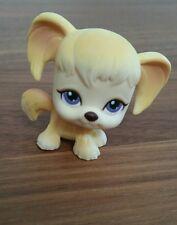 Littlest Pet Shop Cocker Spaniel mit lila Augen und Magnet LPS