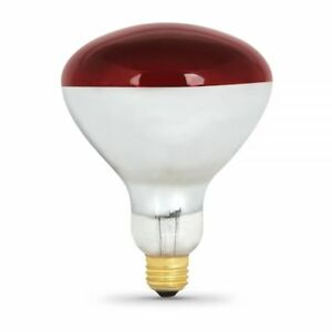 Feit Electric 250r40 R 2 Dimmable R40 Flood Heat Lamp Red 250w 120v 2 Pack 646635449137 Ebay