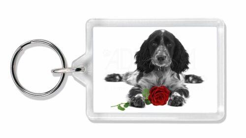 Cocker Spaniel (B+W) with Red Rose Photo Keyring Animal Gift, AD-SC13R2K