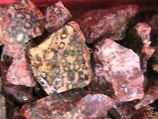 Tumbler Rocks Leopard Skin Jasper Stone for Tumbling