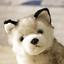 Realistic-Husky-Dog-Plush-Toy-Stuffed-Animal-Soft-Wolf-Pet-Doll-Cute-Kid-Gift-7 thumbnail 2