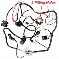Full Motorcycle Electrics Wiring Harness Loom Solenoid Coil 250cc Atv Dirt Bike
