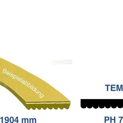 Nervures courroie élastique 1904ph7 1904h7 source Neckermann jacuzzi