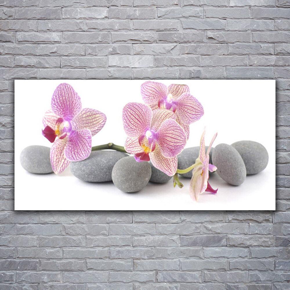 Impression sur verre Wall Art 120x60 Photo Image Tree pierres Floral
