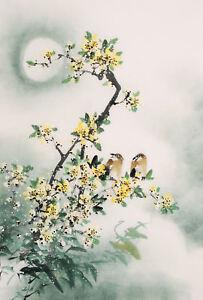 Encadrée Imprimer-traditionnel japonais de dessins avec des oiseaux Asian oriental photo