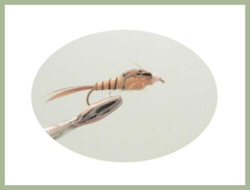 Mayfly nymphe 6 pack Tan queue longue Nymphes mixte 14//16 pour pêche à la mouche