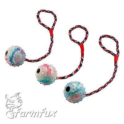 Hundespielzeug Ball am Seil Naturgummi Schleuderball 6cm Seillänge 30cm Wurfball