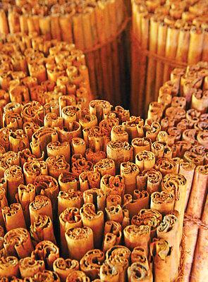 Ceylon Cinnamon sticks-Super ALBA Quality