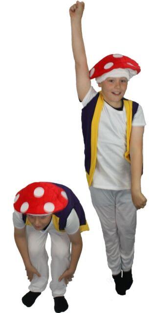 The Dragons Den Kids Costume Highway Man Bandit Fancy Dress Childs Age 8-12