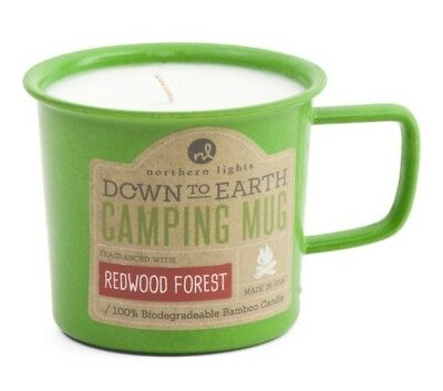 Northern Lights Down to Earth Camping Mug Candle Redwood Forest Made in the USA
