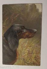 """""""Hund, Dackel, Langhaardackel"""" 1900 ♥ (27111)"""