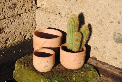 Pflanztöpfe im 3er Set,helle Terracotta,verziert,10//13//16cm,Preisreduziert!!