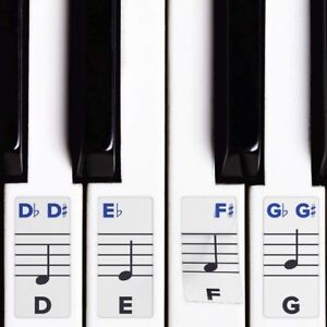 Piano-Stickers-for-Keys-Removable-Double-Layer-Coating-49-61-76-or-88-Keyboards