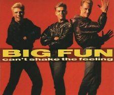 Big Fun Can't shake the feeling (1989) [Maxi-CD]