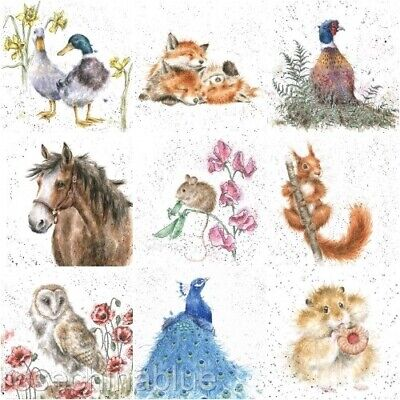 Wrendale Designs-The Country Set-Blank Greetings Card-3 Rabbits-Bunny-Born Free